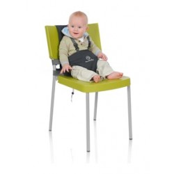 Travel Chairs & Carriers